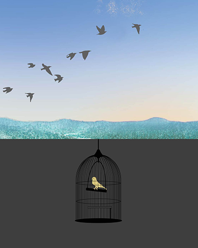 Illustration of birds flying and a canary in a cage.